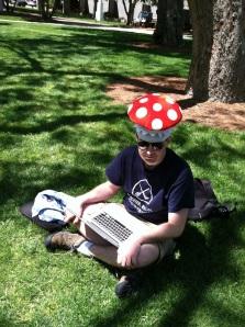 mushroom hat2